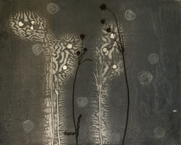 Sade (40 x 50 cm, unique print, photopolymer, etching)